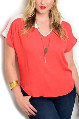 Plus Size Sheer Color Block Casual Top