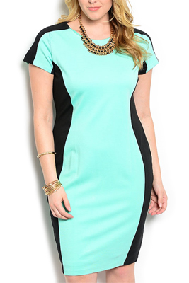 Plus Size Sexy Fitted Color Block Dress