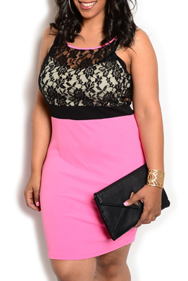 Plus Size Chic Sheer Lace Fitted Date Dress