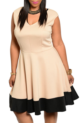 Plus Size Trendy Fit and Flare Color Block Date Dress