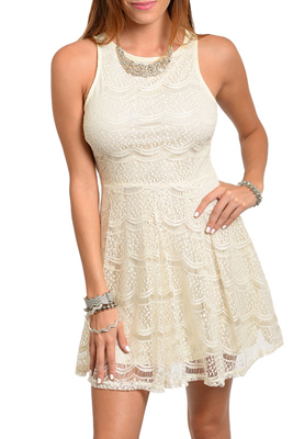 Classy Sheer Abstract Lace Overlay Zipper Back Dress